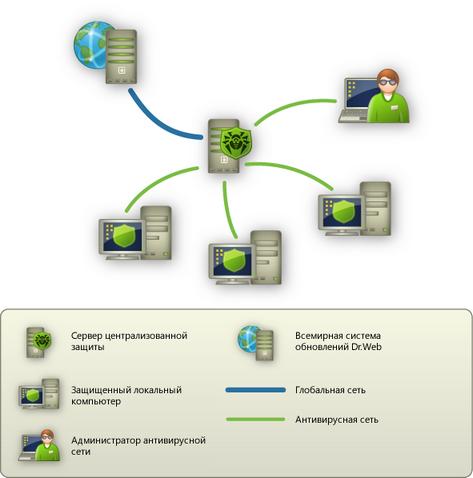 антивирусной сети.